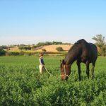 foto di giacomo con il nostro cavallo agriturismo biologico peretti